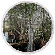 Everglades Swamp-1 Round Beach Towel