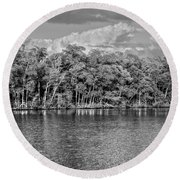 Everglades Round Beach Towel by Timothy Lowry