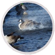 Everyone Duck Round Beach Towel