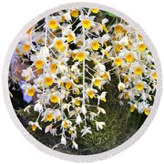 Exotic Aerides Round Beach Towel