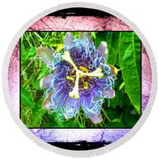 Round Beach Towel featuring the photograph Exotic Strange Flower by Absinthe Art By Michelle LeAnn Scott