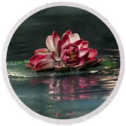 Round Beach Towel featuring the photograph Exquisite Water Flower  by Lucinda Walter