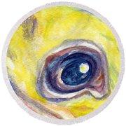 Eye Of Pelican Round Beach Towel