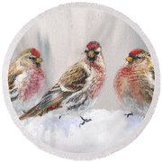 Snowy Birds - Eyeing The Feeder 2 Alaskan Redpolls In Winter Scene Round Beach Towel