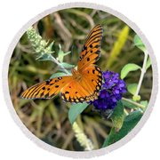Eyes On A Butterfly Round Beach Towel
