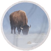 Round Beach Towel featuring the photograph Faces The Blizzard by Jack Bell
