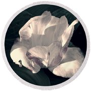 Faded Beauty Round Beach Towel by Photographic Arts And Design Studio