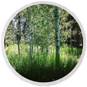 Fairy Circle Round Beach Towel