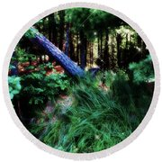 Round Beach Towel featuring the photograph Fairy Forest by Jamie Lynn