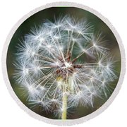 Round Beach Towel featuring the photograph Fairy Umbrellas by Kathy Barney