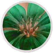 Round Beach Towel featuring the photograph Fall Flower 2 by WB Johnston