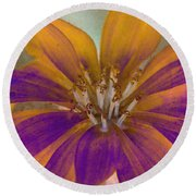 Round Beach Towel featuring the photograph Fall Flower by WB Johnston