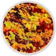 Fall Foliage Colors 13 Round Beach Towel