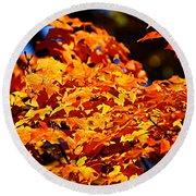 Fall Foliage Colors 16 Round Beach Towel