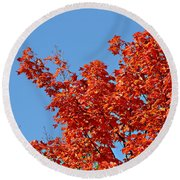 Fall Foliage Colors 20 Round Beach Towel