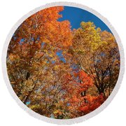 Fall Foliage Round Beach Towel by Patrick Shupert