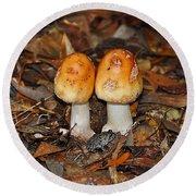 Fall Fungi Round Beach Towel