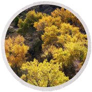 Round Beach Towel featuring the photograph Fall On The Chama River by Roselynne Broussard