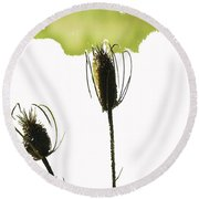 Fall On White Round Beach Towel