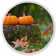 Fall Pumpkins Round Beach Towel by Mike Ste Marie