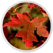 Fall Red Beauty Round Beach Towel