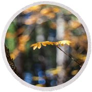 Fall Suspended Round Beach Towel by Aaron Aldrich