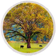 Fall Tree With Two Cows Round Beach Towel by Michele Avanti