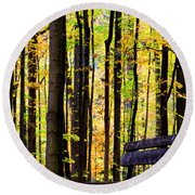 Fall Woods In Michigan Round Beach Towel