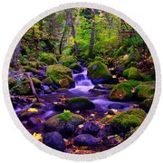 Fallen Leaves On The Rocks Round Beach Towel