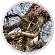 Fallen Twisted Giant Round Beach Towel