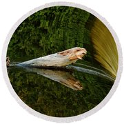 Round Beach Towel featuring the photograph Falling Tree Reflections by Debbie Oppermann