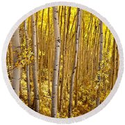 Fall's Golden Light Round Beach Towel
