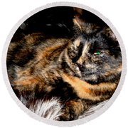 Fancy Cat Round Beach Towel