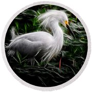 Fancy Feathers Round Beach Towel