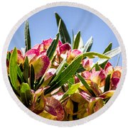 Fanned Flowers Round Beach Towel