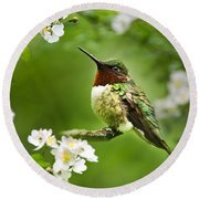 Fauna And Flora - Hummingbird With Flowers Round Beach Towel by Christina Rollo