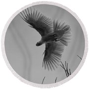 Feathered Flight  Round Beach Towel