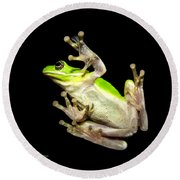 Feathered Frog Round Beach Towel