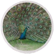 Feathers On Display Round Beach Towel