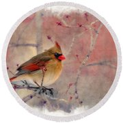 Female Cardinal Portrait Round Beach Towel