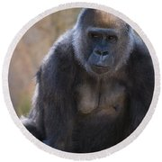 Female Gorilla Round Beach Towel