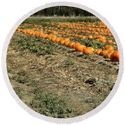 Round Beach Towel featuring the photograph Fencing The Pumpkin Patch by Michael Gordon