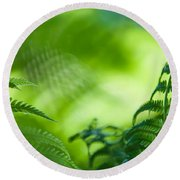 Fern Leaves. Healing Art Round Beach Towel