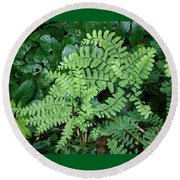 Ferns-iii Round Beach Towel