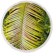 Round Beach Towel featuring the photograph Ferns by Kate Brown