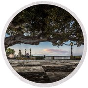 Ficus Magnonioide In The Alameda De Apodaca Cadiz Spain Round Beach Towel