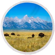 Round Beach Towel featuring the photograph Field Of Bison With Mountains by Panoramic Images