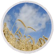 Field Of Wheat Round Beach Towel by Charles Beeler
