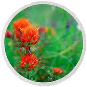 Field Of Wildflowers With Indian Round Beach Towel