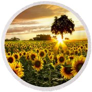 Fields Of Gold Round Beach Towel by Debra and Dave Vanderlaan